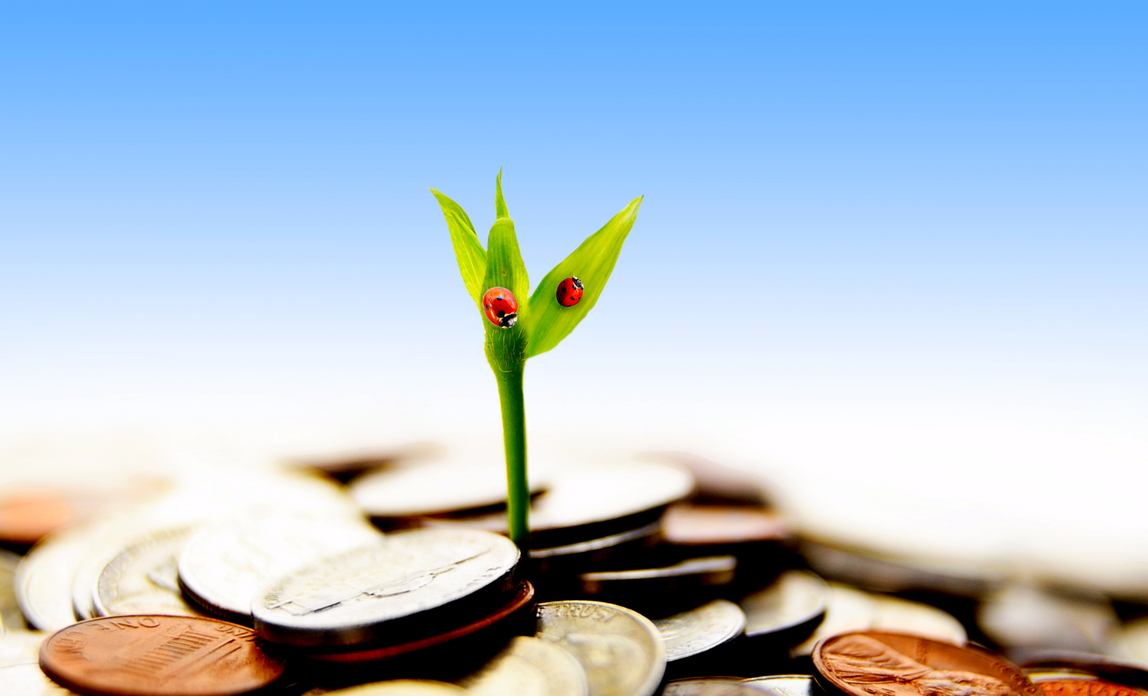 Plant growing from coins - Debt recovery FAQs