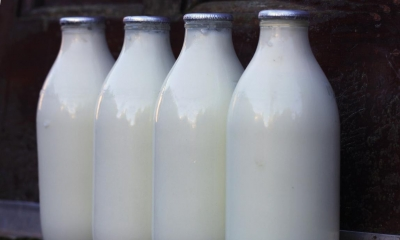 Four glass bottles of milk with black background
