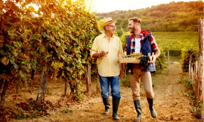 Farther and son laughing together at sunset on a vineyard