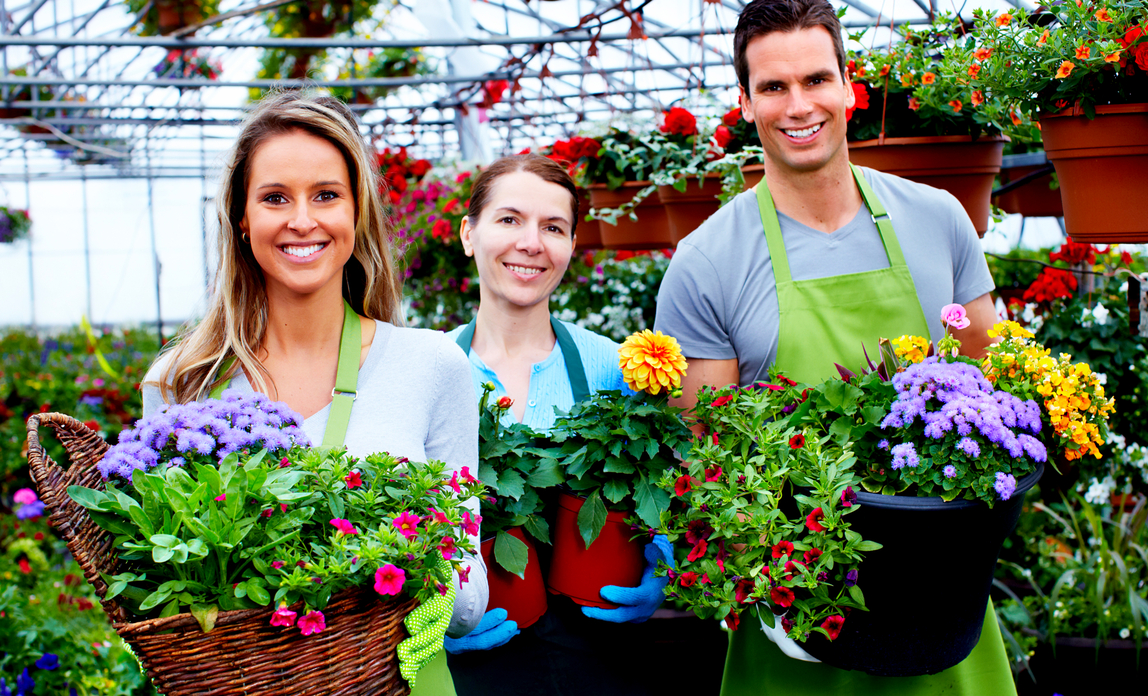 Family flower business - Passing your business on to your family FAQs
