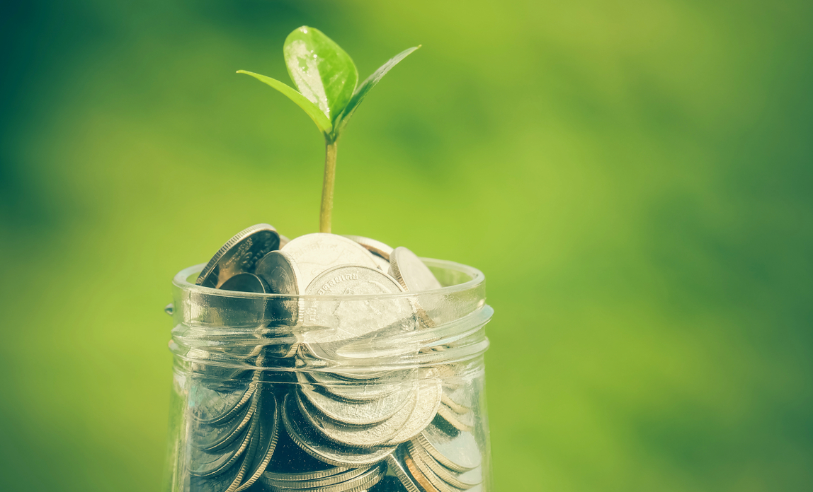 Small plant growing from money jar - Savings-related share options